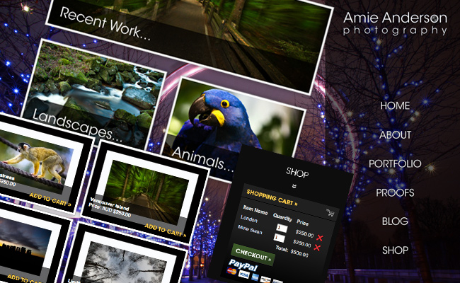 Amie Anderson Photography Website