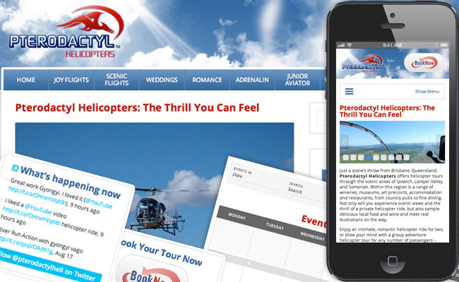 Pterodactyl Helicopters website