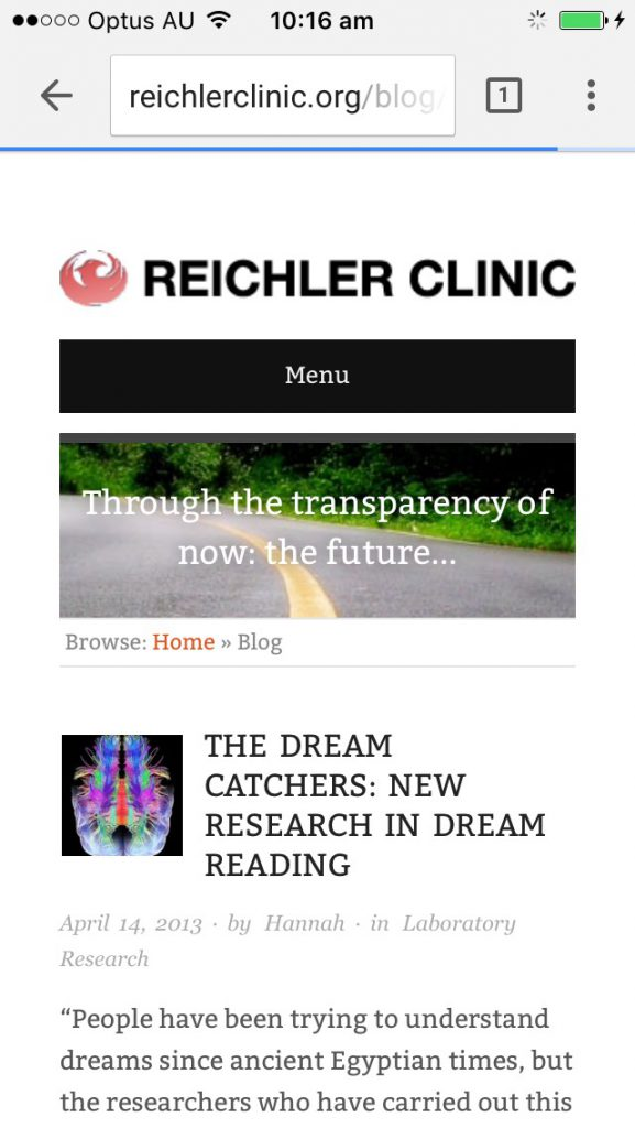 Responsive design - same website, handheld screen.