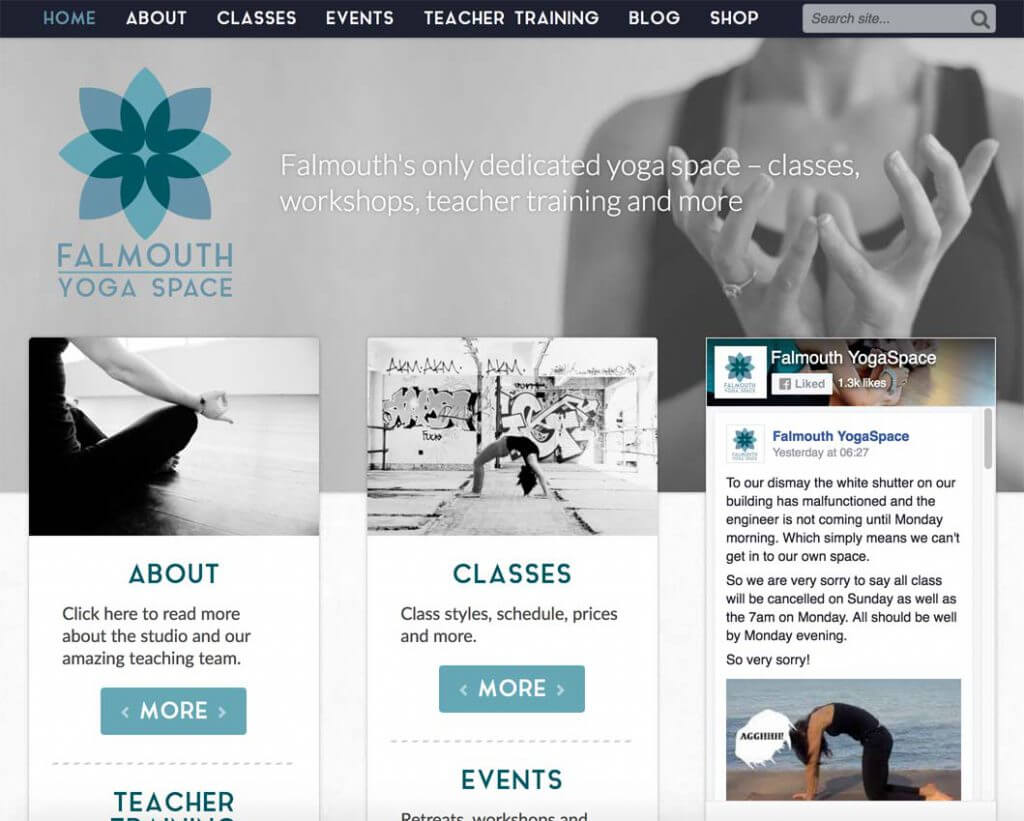 FYS homepage; taking advantage of the excellent photos provided by the client!