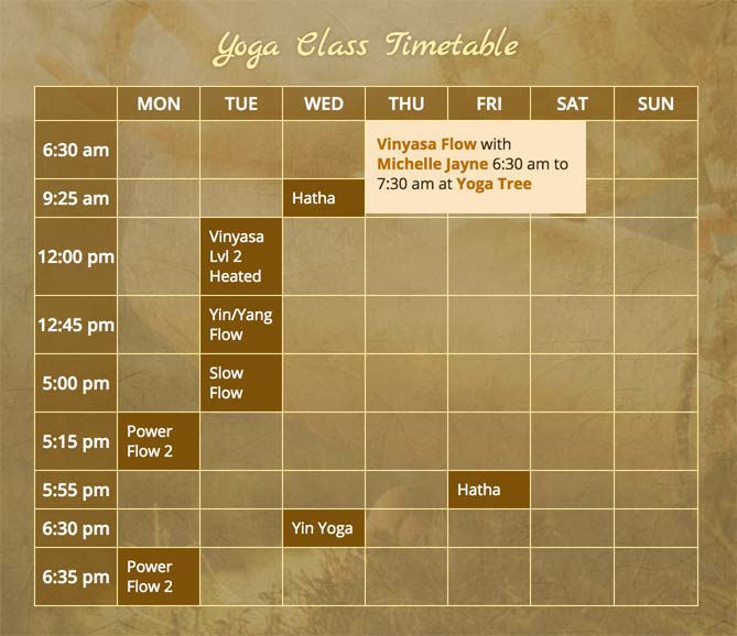 Class schedule (desktop view), with added information about a class on hover.